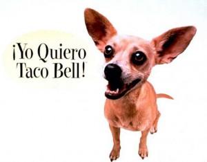 Gidget, Taco Bell Dog