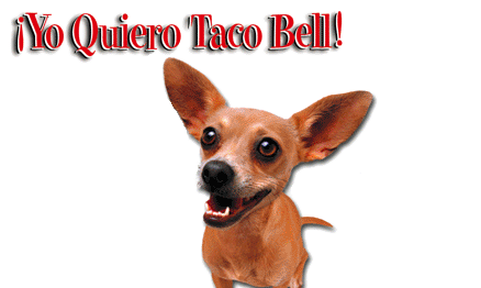 Where's Gidget, the Taco Bell Chihuahua, When You Need Her?