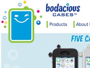Bodacious Cases Website