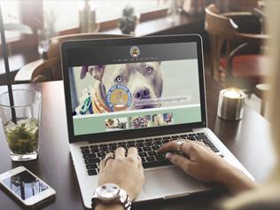 Bi-State Pet Food Pantry Website